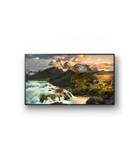 TV Professionale Sony LED 4K FWD-100ZD9501